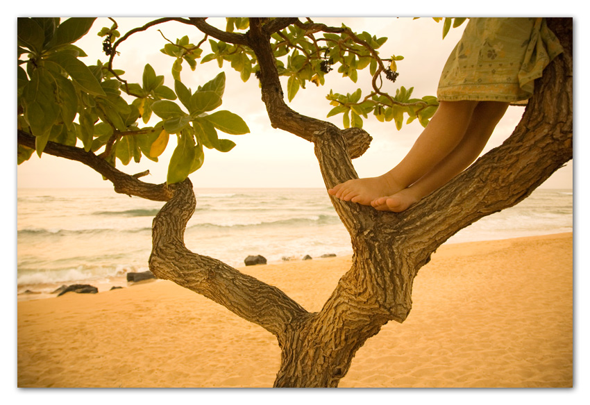 Close up of girl's feet on tree at beach Kapaa Kauai Hawaii