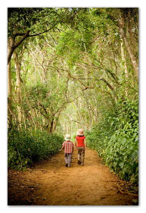 Boy and girl walking through tree tunnel Kapaa Kauai Hawaii